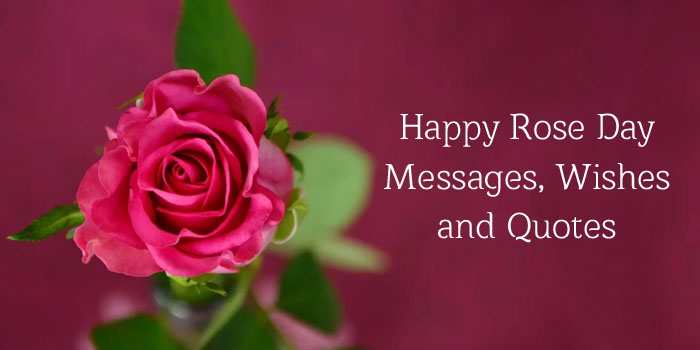 Rose Day Messages and Quotes